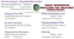 Pengumuman Hasil SKB CPNS Kabupaten Banyuwangi Formasi 2019