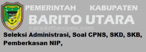 CPNS 2019 Kabupaten Barito Utara