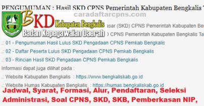 Pengumuman CPNS Kabupaten Bengkalis 2021 Lulusan SMA SMK D3 S1 S2