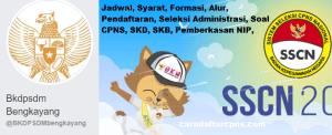 Pengumuman Hasil SKB CPNS Kabupaten Bengkayang Formasi 2019