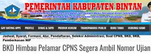 Pengumuman CPNS Kabupaten Bintan 2021 Lulusan SMA SMK D3 S1 S2