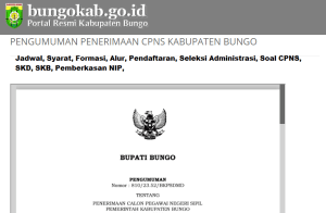 Pengumuman CPNS Kabupaten Bungo 2021 Lulusan SMA SMK D3 S1 S2