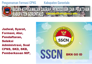 Pengumuman Hasil Seleksi Administrasi CPNS Kab Gorontalo 2019