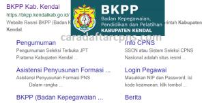 CPNS 2019 Kab Kendal