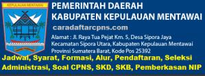 Pengumuman CPNS Kabupaten Mentawai 2021 Lulusan SMA SMK D3 S1 S2
