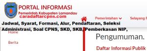 Pengumuman CPNS Kabupaten Lamandau 2021 Lulusan SMA SMK D3 S1 S2