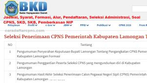 CPNS 2019 Kab Lamongan