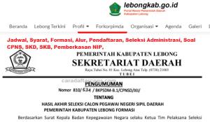Pengumuman CPNS Kabupaten Lebong 2021 Lulusan SMA SMK D3 S1 S2