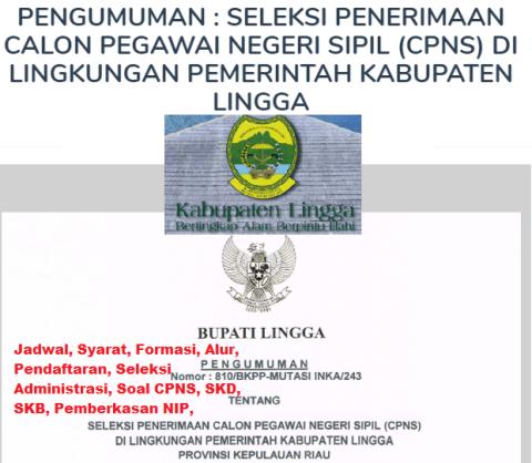 Pengumuman CPNS Kabupaten Lingga 2021 Lulusan SMA SMK D3 S1 S2
