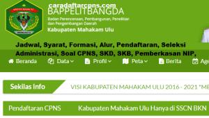 Pengumuman CPNS Kabupaten Mahakam Ulu 2021 Lulusan SMA SMK D3 S1 S2