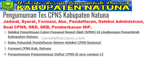 Pengumuman Hasil SKB CPNS Kabupaten Natuna Formasi 2019