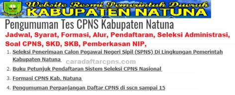 Pengumuman CPNS Kabupaten Natuna 2021 Lulusan SMA SMK D3 S1 S2
