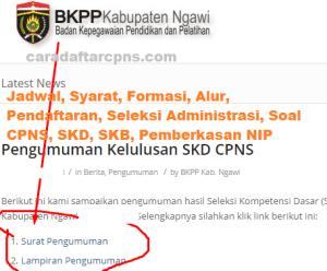 CPNS 2019 Kab Ngawi
