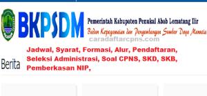 Pengumuman Hasil SKB CPNS Kabupaten PALI Formasi 2019