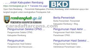 Jadwal Pendaftaran CPNS Kabupaten Rembang 2021 Lulusan SMA SMK D3 S1 S2