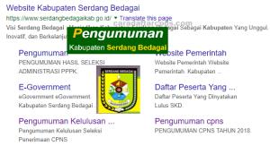 Jadwal Pendaftaran CPNS Kabupaten Serdang Bedagai 2021 Lulusan SMA SMK D3 S1 S2