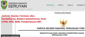 Pengumuman Hasil SKB CPNS Kabupaten Seruyan Formasi 2019