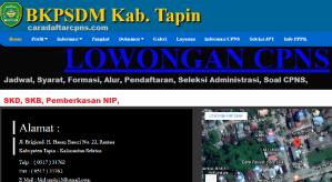 Pengumuman Hasil SKB CPNS Kabupaten Tapin Formasi 2019