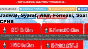 Pengumuman Hasil SKB CPNS Kabupaten Temanggung Formasi 2019