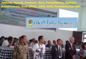 Pengumuman Hasil SKB CPNS Kabupaten Toba Samosir Formasi 2019