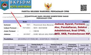 Hasil Seleksi Administrasi CPNS Kota Mataram 2019