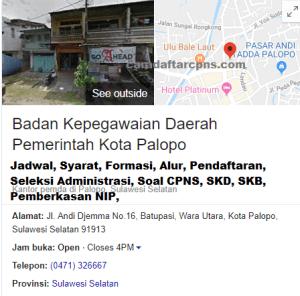 Pengumuman Hasil SKB CPNS Kota Palopo Formasi 2019