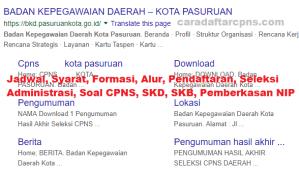 Pengumuman Hasil SKB CPNS Pemkot Pasuruan Formasi 2019