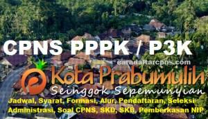Pengumuman Hasil SKB CPNS Pemkot Prabumulih Formasi 2019