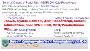 Pengumuman Hasil SKB CPNS Pemkot Probolinggo Formasi 2019