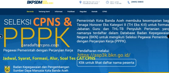 Hasil Seleksi Administrasi CPNS Pemkot Banda Aceh 2021
