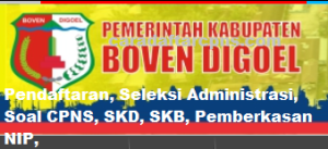 Pengumuman Hasil Akhir CPNS Kabupaten Boven Digoel Formasi 2019