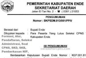 Pengumuman CPNS Kabupaten Ende 2021 Lulusan SMA SMK D3 S1 S2