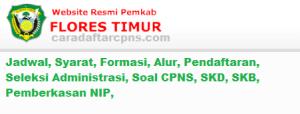 Hasil SKD SKB CPNS Kab Flores Timur 2019 2020