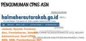 CPNS 2019 Kab Halmahera