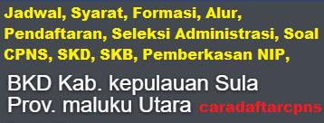 Pengumuman CPNS Kabupaten Sula 2021 Lulusan SMA SMK D3 S1 S2