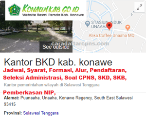 Pengumuman Hasil SKD SKB CPNS Kab Konawe 2019 2020