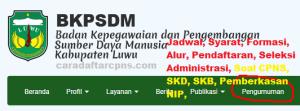 Pengumuman Hasil SKB CPNS Kabupaten Luwu Formasi 2019
