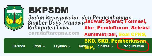 Pengumuman CPNS Kabupaten Luwu 2021 Lulusan SMA SMK D3 S1 S2