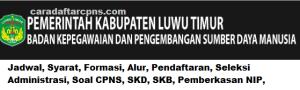 CPNS 2019 Kabupaten Luwu Timur
