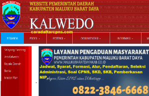 CPNS 2019 Kabupaten Maluku Barat