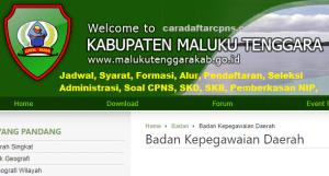 CPNS 2019 Kabupaten Maluku Tenggara