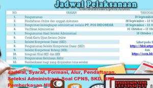 Pengumuman Hasil Akhir CPNS Kabupaten Nagekeo Formasi 2019