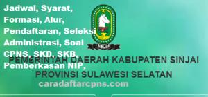 Pengumuman CPNS Kabupaten Sinjai 2021 Lulusan SMA SMK D3 S1 S2