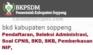 Pengumuman Hasil SKB CPNS Kabupaten Soppeng Formasi 2019
