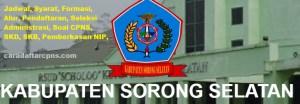 CPNS 2019 Kabupaten Sorong Selatan
