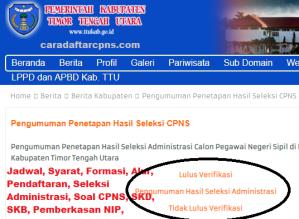 Pengumuman CPNS Kabupaten TTU 2021 Lulusan SMA SMK D3 S1 S2
