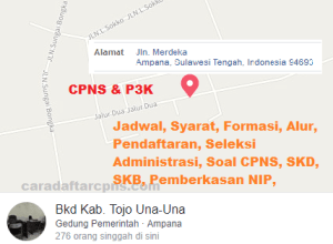 Pengumuman Hasil SKB CPNS Kabupaten Tojo Una-una Formasi 2019