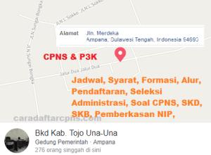 Pengumuman CPNS Kabupaten Tojo Una-Una 2021 Lulusan SMA SMK D3 S1 S2