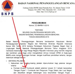 Pengumuman Hasil SKB CPNS BNPB Formasi 2019