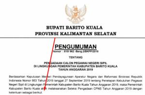 Pengumuman Hasil SKB CPNS Kabupaten Barito Kuala Formasi 2021 2022
